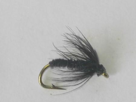 Leisenring black gnat