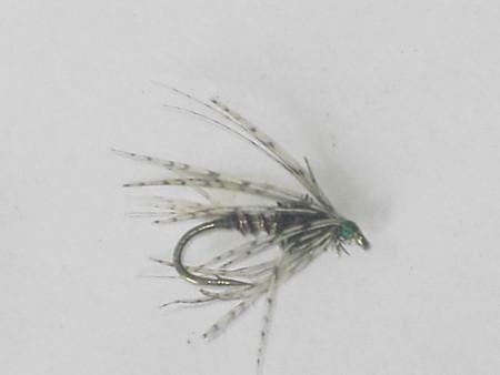 Nico wet fly