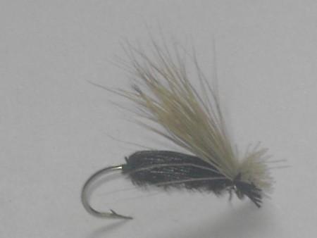 Flying beetle black dry fly