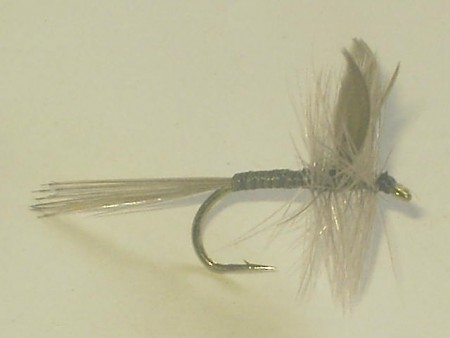 Quill gray dry fly