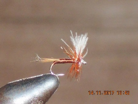 Cdc dry fly