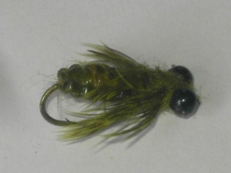 Dragon fly olive