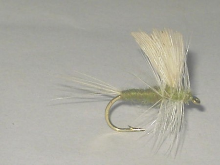 BWO thorax dry fly