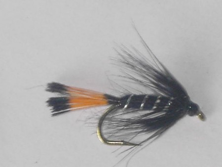 Black pennell wet fly